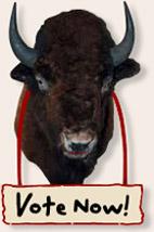 bisonheadvotenow